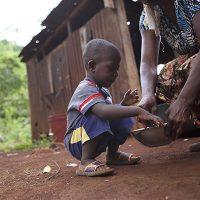 Nations Help Haiti Nutrir